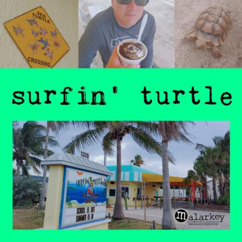 surfin turtle