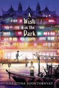 florida sunshine state reading list - a wish in the dark